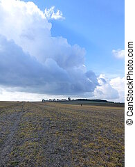 Large plowed field under the blue sky