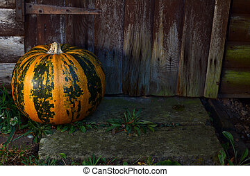Large pumpkin on a step by a wooden door