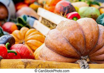 large ribbed orange pumpkin on the background of vegetables mini pumpkin red pepper box wooden