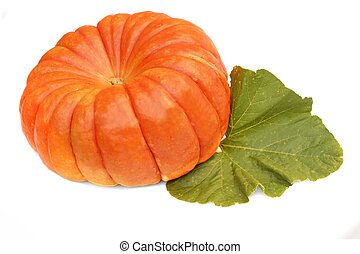 Large Ripe Pumpkin with Leaf