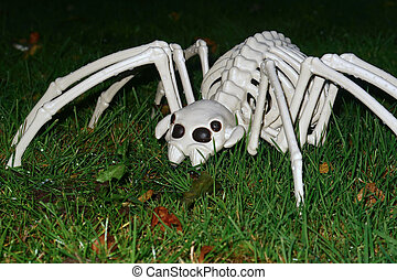 Large Scary Spider hunting on All hallows eve