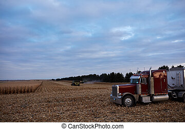 Large semi waiting at the edge of a maize field