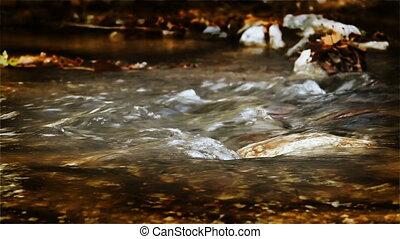 large, sepia-toned, ruisseau, hd, écoulement