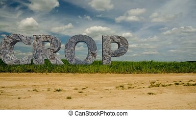 """Large stone letters with the inscription """"CROP"""". 49 - Large..."""