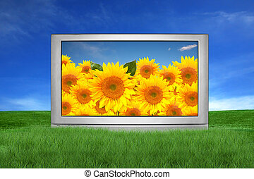 Large TV Outside in a Fantasy Landscape Setting - Large...