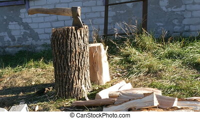 Large village ax sticking in tree stump and firewood near -...