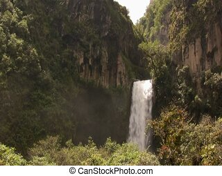Large waterfall in cloudfores - The Rio Pita Valley in the...