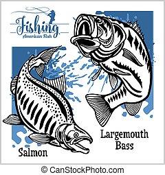 Largemouth Bass and Salmon fishing on usa