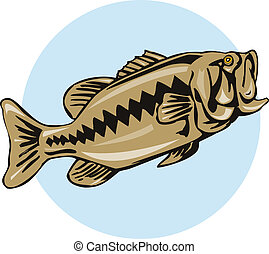 Largemouth bass - Illustration of a bass