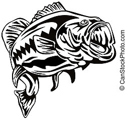 Illustration of a bass