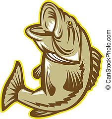 largemouth, fish, sauter, basse, retro
