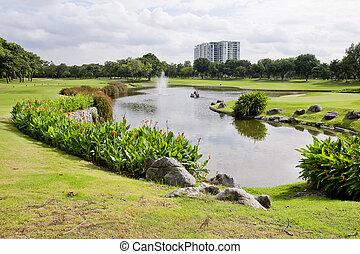 largo, ensolarado, parque, lagoa, agradável, dia, vista