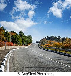 largo, estrada, entre, árvores outono