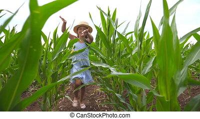 largo, niño, encima, paja, niña, rubio, por, campo, maíz,...