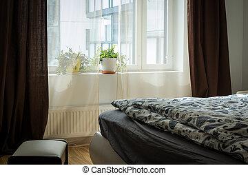 largo, planta, sótão, casa, modernos, fornecido, bed., houseplant, bedroom.comfortable, lounge, modular, luminoso, interior, interior., quarto, apartamento, suite.