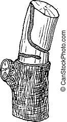 larvas, vendimia, coroebus, cavado, bifasciatus, galería, engraving.