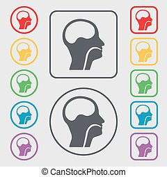 larynx, Medical Doctors Otolaryngology icon sign. symbol on...