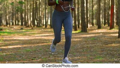 las, 4k, jogging, kobieta