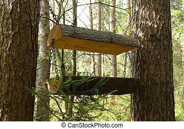 las, dozownik, dla, zwierzęta, i, birds., nature., przedimek określony przed rzeczownikami, fotografia