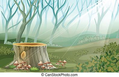 las, pień