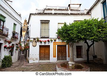 las, spanien, cordoba, calleja, flores, af