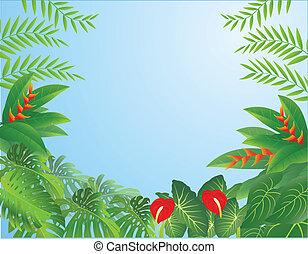 las, tło, tropikalny