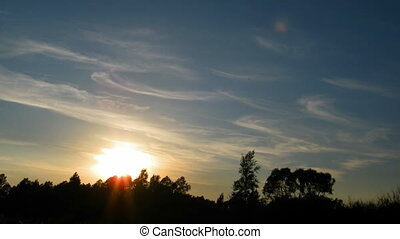 las, zachód słońca, na