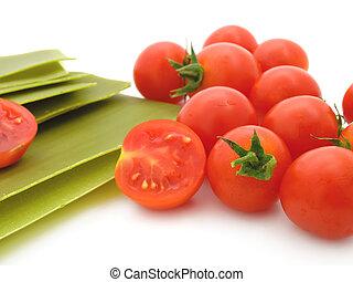 lasanha, folhas, com, tomates