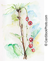 Last autumn berries concept- handmade watercolor painting illustration on a white paper art background