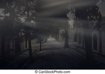 Last rays of light in the old cemetery
