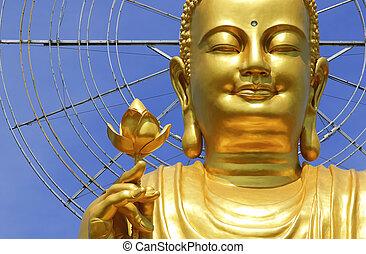 lat, buddha, vietnam), (da