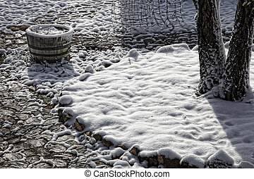 Late Spring Snowfall