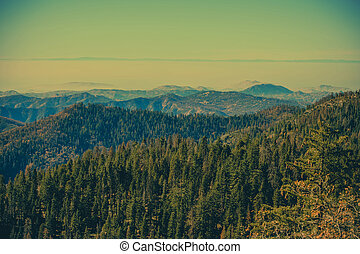 Late Summer in the Sierra Nevada Mountains