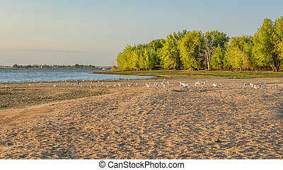 early summer morning in Boyd Lake State Park, Colorado with an empty swimming beach