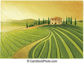 Late Tuscany Drawing