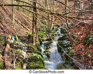 Late winter beautiful mountain creek - colorful nature -...