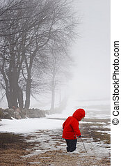A young boy explores on a foggy late winter day