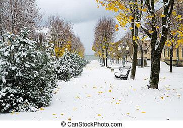 later, autumn., parc, neige, ruelle, orage