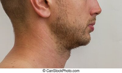 Lateral part of the male face growing beard of young...
