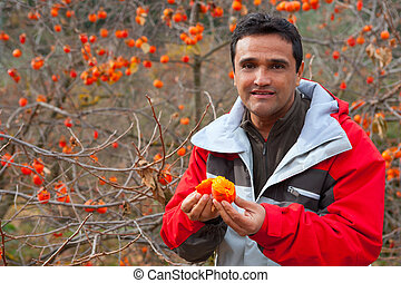 Latin farmer in autumn with persimmon fruits