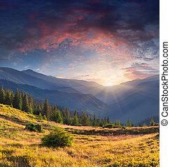 lato, barwny, krajobraz, góry