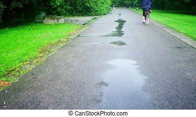 lato, kobieta kolarstwo, nieznany, po, park, deszcz, wzdłuż, droga