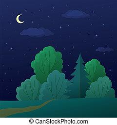 lato, krajobraz, las, noc