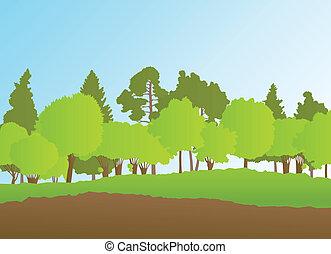 lato, krajobraz, wektor, las, tło