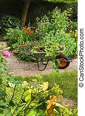 lato, kwiaty, ogród, taczki