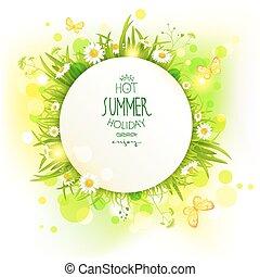 lato, kwiaty, tło, lekki