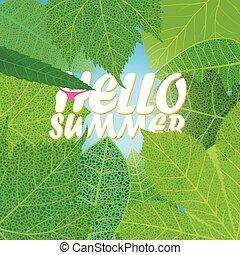 lato, liście, zielony