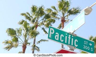 lato, los, turysta, symbol, tytuł, miasto, vacations....