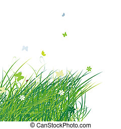 lato, motyle, zielone tło, pole