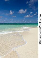 lato, pionowy, słoneczny, tropikalny, dzień, plaża, skład, piaszczysty